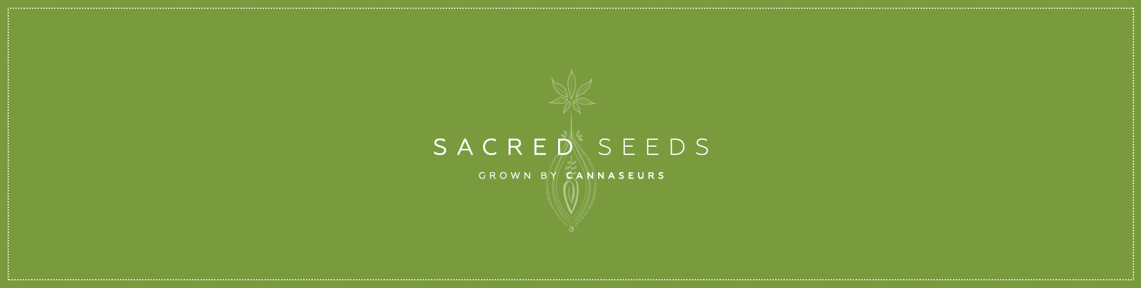 Sacred-Seeds-Grown-By-Cannaseurs